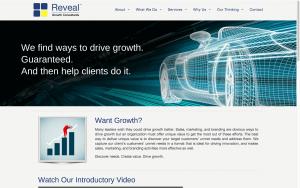 Website Design Screenshot of Reveal Growth