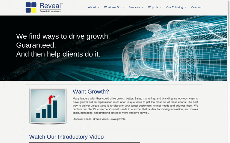 Website Design Screenshot of Reveal Growth